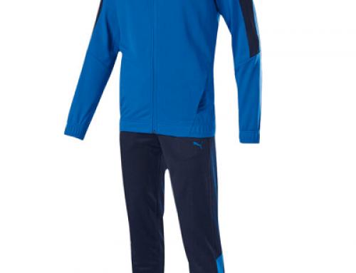 Trening pentru bărbați Puma Techstripe QWS52E albastru, regular fit
