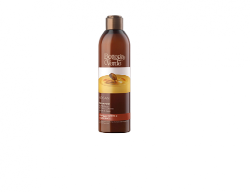 Șampon WB-LsQDH Bottega.V hidratant și hrănitor cu ulei de argan, pentru păr fragil,  uscat și deteriorat